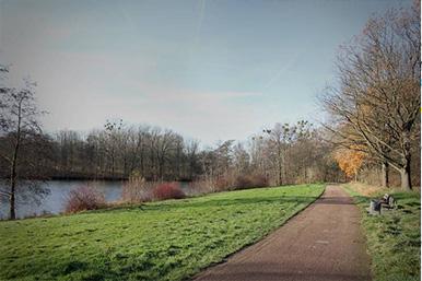 Umgebung Fußweg am See